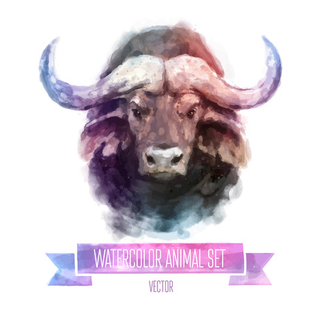 wild nature: Vector set of watercolor illustrations. Cute bull