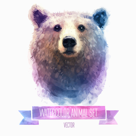wild nature: Vector set of watercolor illustrations. Cute bear