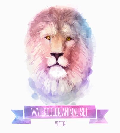 animal: 向量組的水彩插圖。可愛的獅子