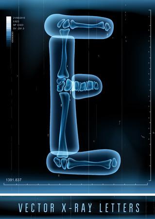 벡터 3D X- 레이 투명 한 알파벳 문자 E