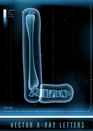 x xray: Vector 3D X-ray transparent alphabet Letter L Illustration