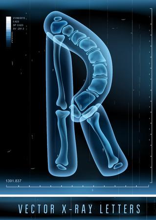huesos: Vector 3D X-ray alfabeto transparente de la letra R