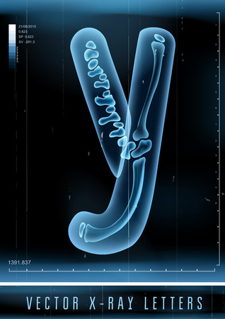 Vector 3D X-ray transparent alphabet Letter Y