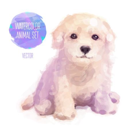 동물: 벡터 동물의 집합입니다. 개 손으로 그린 수채화 그림 흰색 배경에 고립 일러스트