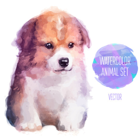 Vector set of animals. Dog hand painted watercolor illustration isolated on white background Çizim