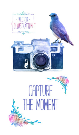 Vector watercolour camera with bird drawing on white background