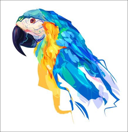 parakeet: The parrot head on white background. Retro design graphic element. This is illustration ideal for a mascot and tattoo or T-shirt graphic. Stock illustration Illustration