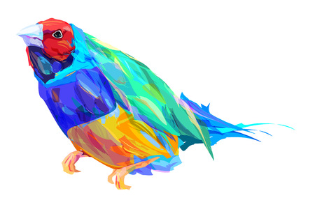 finch: The  exotic bird isolated on white background. Retro design graphic element. This is illustration ideal for a mascot and tattoo or T-shirt graphic. Stock illustration