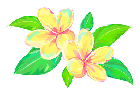 pink plumeria: Cute  rose. Set of flowers isolated on white background. Retro design graphic element. This is illustration ideal for a mascot and tattoo or T-shirt graphic. Stock illustration