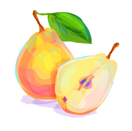 summer diet: Vector hand drawn painting fruit. Pear on white background. This is illustration ideal for a mascot and T-shirt graphic. Stock illustration