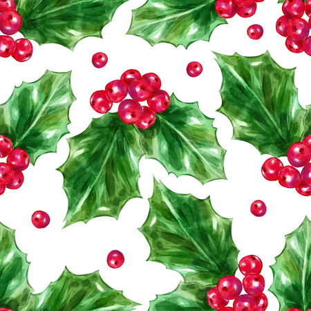 ilex: Seamless pattern watercolor berries ilex aquifolium leaves. X-mas card. Big collection of  illustrations. Good for book illustration, magazine or journal article.