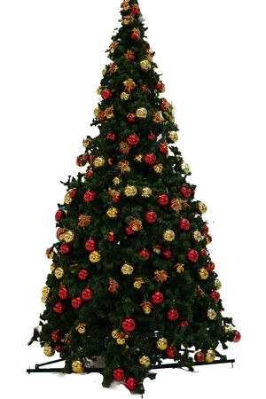 Christmas tree on transparent background with Yellow Red balls.