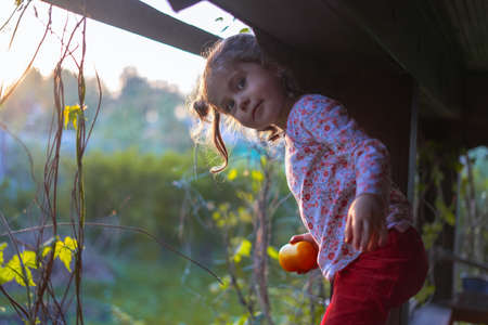 Little girl climbs the gazebo looking for adventure