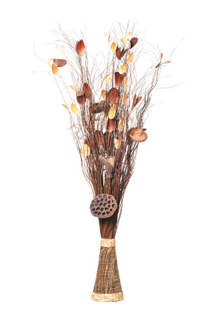 Vase With Dry Branches Decorative Sticks And Dried Twigs Isolated