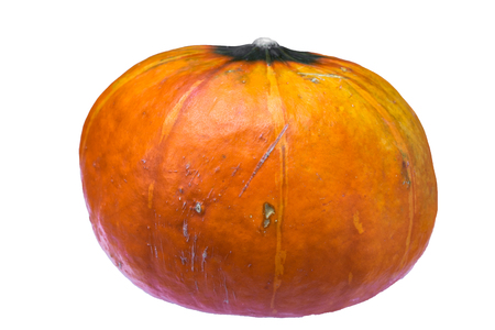 Ugly Pumpkin Stock Photos And Images 123rf