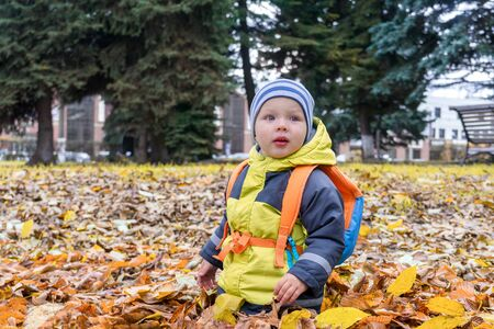 toddler with a colorful child backpack plays among foliage in city Park in autumn. Imagens