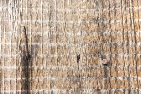Texture of old board with rusty nails driven in and natural weathered wood pattern.