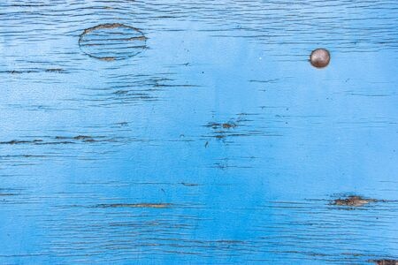 Old wooden surface with iron nail and covered with blue paint and small cracks. Bright natural background for your design with copy space and place for text.