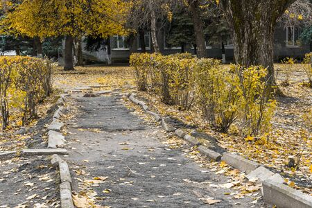 Urban landscape. Unenclosed territory of autumn Park. ruined pedestrian path, sidewalk with broken asphalt surface and curb.
