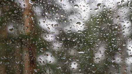 Water drops on car window closeup on rainy spring day. Blurred forest background. selective focus. Imagens