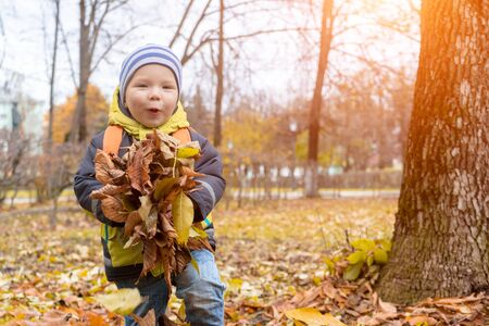 Cute, smiling little boy plays with dry, yellow, autumn leaves in city Park , holding them in his hands before throwing them up. Happy childhood.