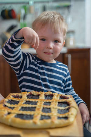 Little cute blond boy sweet tooth is looking forward to trying berry pie with jam.