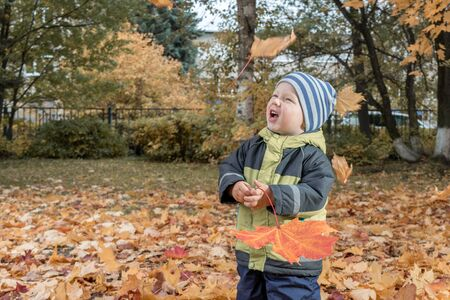 cheerful kid catching maple leaves falling in autumn city Park. Imagens
