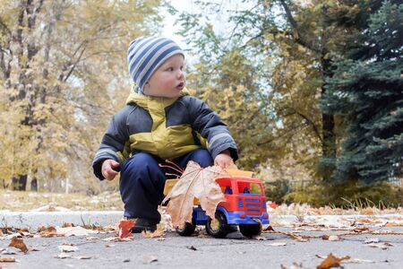 Little boy plays with toy car collecting yellow maple leaves in back of truck in city's autumn park. Children's outdoor games, child development. Imagens
