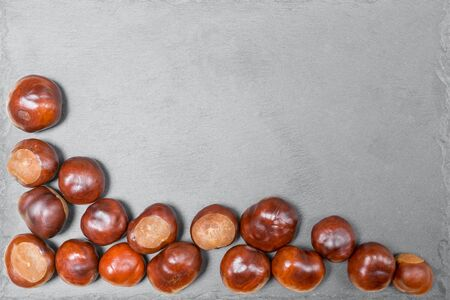 Large ripe shiny brown chestnut nuts on gray stone board close up with copy space and place for text, design. Flat lay. Imagens