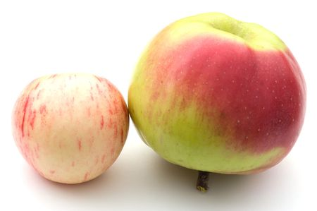 Two ripe apples on a white background. A close up. Stock Photo - 5639484