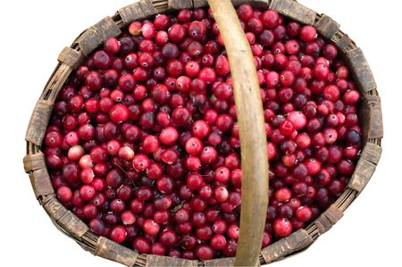 Red ripe cranberry in a wattled basket on a white background. Stock Photo - 5639527