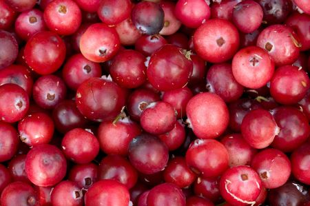 The pattern  from fresh ripe red berries of a cranberry. A close up. Stock Photo - 5639559
