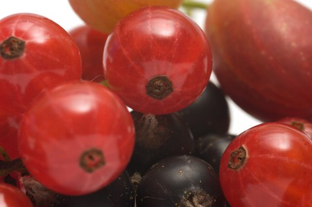 Closeup shot of gooseberry black and red currants.