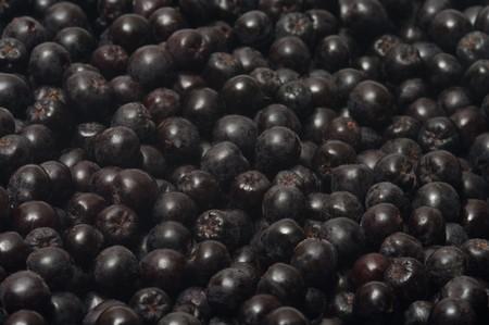 Close up shot background of aronia berries. Stock Photo - 7897595