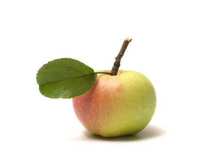 Ripe apple isolated on a white background. photo