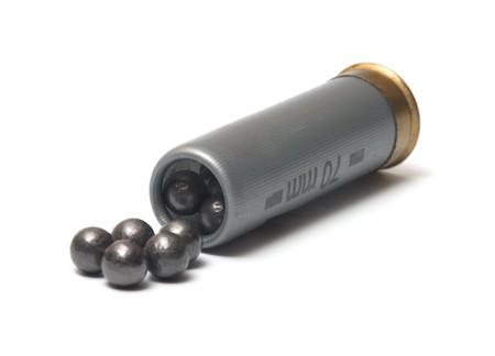 gun shell: El cartucho de caza con un cargo de caso-shot sobre un fondo blanco.