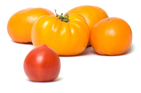 Red and yellow tomatoes on a white background.