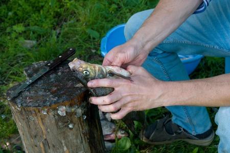 Outdoor shot of man prepares fresh river fish.
