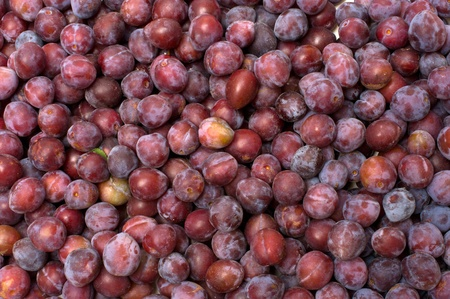 Background from ripe plums. Stock Photo - 10443599
