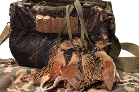 Game bag and corncrakes in camouflage cloth.