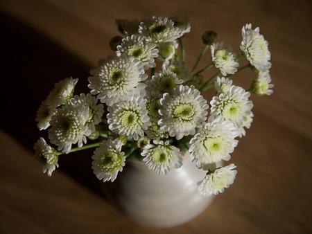 arrangment: Cosy small white chrysanthemum arrangment on dark wooden background