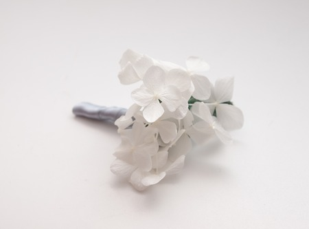 buttonhole: Minimalistic white hydrangea wedding buttonhole on grey background Stock Photo