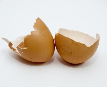 eggshell: Eggshell Stock Photo