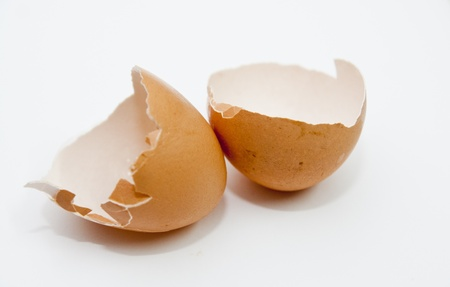 Eggshell Stock Photo