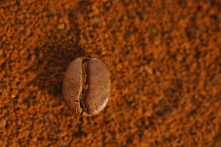 Roasted coffee bean - laid over used ground coffee. Close-up on coffee bean with blurred background. Brown color, lots of visible details. Stock fotó
