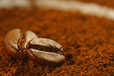 Roasted coffee bean - laid over used ground coffee. Close-up on coffee bean with blurred background. Brown color, lots of visible details.