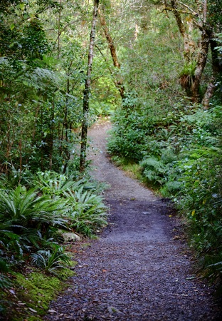 Natures Path In New Zealand