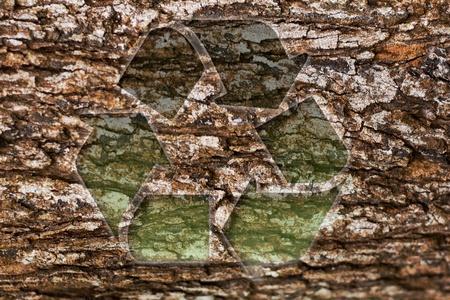 deforestacion: Textura de madera reciclar
