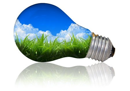 light bulb with grass and sky