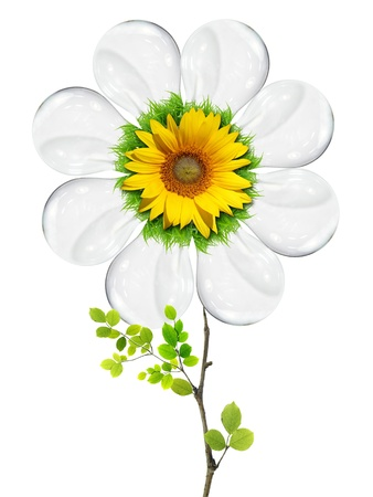 light bulb flower on with background photo